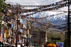 12-06-26 India-Ladakh (84) O01 (Nikobo3) Tags: asia india ladakd kashmir kachemira karakorum himalayas jammu leh paisajeurbano urban street panasonic panasonictz7 tz7 nikobo joségarcíacobo