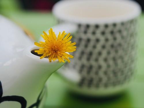Teatime in Spring