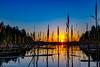 Some reed i the sunset (Tube Séboom) Tags: reed fujifilmxt2 fuji huddinge lake fujinon14mm tpe clearblue sunset water sky sun awesome magical mystic