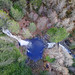 Falls of Bruar: Gorge