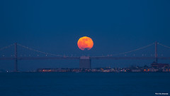 Full Moon San Francisco (davidyuweb) Tags: full moon san francisco 三藩市 月亮 baybridge luckysnapshot