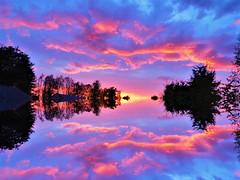 Night (Tobymeg) Tags: night sky mirrored altered images last cloud corel panasonic dmcfz72
