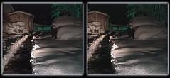 The Cold Dark Path - Crosseye 3D (DarkOnus) Tags: the cold dark path pennsylvania buckscounty huawei mate8 cell phone 3d stereogram stereography stereo darkonus snow snowy horse eerie scary crossview crosseye winter