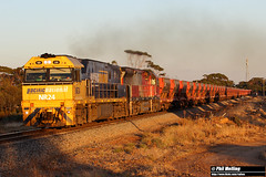 31 March 2018 NR24 MRL005 empty MRL train Merredin (RailWA) Tags: philmelling merredin railwa 2018 nr24 mrl005 empty mrl train