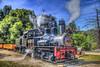 Letting Off Some Steam (Michael F. Nyiri) Tags: roaringcamprailways trains locomotive steamlocomotive feltonca california