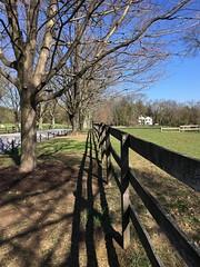 Garrison Forest ~ vanishing shadowplay (karma (Karen)) Tags: garrisonforest owingsmills maryland driveways trees fences vanishingpoint shadows shadowplay hff iphone topf25