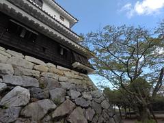 Castle south chute _orig_LG (Hazbones) Tags: iwakuni yamaguchi yokoyama castle kikkawa suo chugoku mori honmaru ninomaru demaru wall armor samurai spear teppo gun matchlock map ropeway