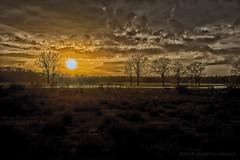 Sunset at Mastbos Breda - Zonsondergang (schreudermja) Tags: martyschreuder nikond800e nederland thenetherlands mastbos breda woods sunset zonsondergang hdr art clouds heide moorland vlonder vlonderpad footbridge