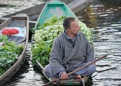 Man with aquiline nose (Nagarjun) Tags: floatingvegetablemarket flowers dallake kashmir srinagar commerce trade veggies kohlrabi dawn morning sunrise green
