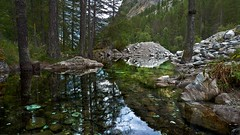 Ailefroide (Daphne-8) Tags: ailefroide hautesalpes écrins france frankreich alps alpen alpi alpes reflection reflexion spiegelung water wasser aqua agua lake lac see lago nature mountains berge montañas montanhas montagnes forest wald camping forêt alpine barredesécrins