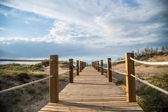 Vanishing point at Riumar (rfabregat) Tags: riumar deltebre deltadelebre terresdelebre tarragona catalunya catalonia sand dunes vanishingpoint perspective