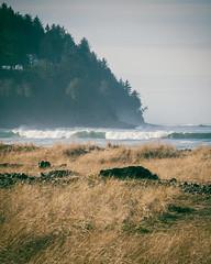 Seaside Oregon (KurtClark) Tags: seaside oregon coast pacific ocean mist seagrass
