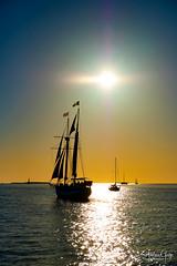 Sailboat Sunset (Andrea Garza ~) Tags: florida keywest floridakeys sunset sailboat catamaran island is sailing sailor ocean sunburst sunflare silhouette pirate cruise sea paradise usa travel wanderlust