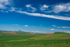 Steptoe Butte (Harry2010) Tags: steptoebutte washington palouse fields green hills rolling agriculture bluesky