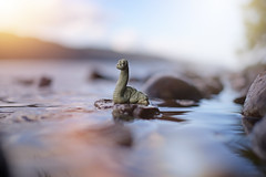Monsters and Mystic... (KissThePixel) Tags: scotland scottish highlands mountains loch lake lochness lochnessmonster monster myth legend sunset sunlight water rocks nessy nessie britain perspective creativephotography landscape macro bokeh soft softbokeh dreamy imagination nikon nikond750 50mm f14 bokehlicious depthoffield dof dofalicious