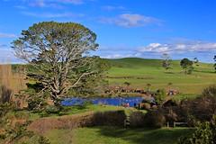 Hobbiton (YY) Tags: newzealand hobbit lordoftherings lotr shire movieset lake matamata