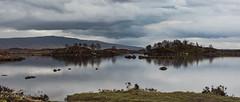 Ecosse -41 (cantabile51) Tags: animaux arbres architectureetbatiments cascade cielmétéo cimetières coucherdesoleil ecosse edificesreligieux leverdusoleil montagne natureetpaysage paysages végétaux chateaux insolite lacs marée océan