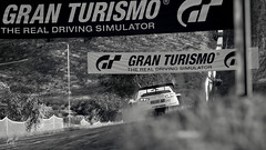 Response (Mr. Pebb) Tags: lancerevolution finaledition grb rallycar mitsubishi 4k 4kgaming ps4 ps4pro playstation4pro playstation4 car asian japanese japan gt granturismosport granturismo pd polyphonydigital polyphony photomode stockshot awd allwheeldrive frontengined racinggame racegame offroader screenshot screencapture rear desaturated blackandwhite blackwhite bw
