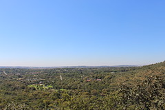 View from the Top (Rckr88) Tags: view from top viewfromthetop viewpoint views waltersisulunationalbotanicalgarden johannesburg southafrica walter sisulu national botanical garden south africa gauteng green greenery gardens botanicalgardens botanicalgarden trees tree naturalworld nature outdoors travel travelling