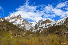 Valle Maira... (Silvio Sola) Tags: montagne mountains valle landscape maira cuneo piemonte italia paesaggio