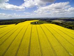 Farley Mount (soaringviews) Tags: aerial farleymount dji phantom yellow fields farmers monument horsemonument lines colinryan clouds