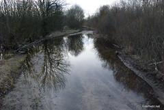 Волинське болото InterNetri Ukraine 11
