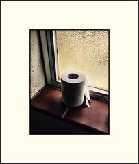 """Untitled"" (Bob R.L. Evans) Tags: toiletpaper unusual irreverent humor curves composition"