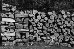 Stacked Firewood (jon_spalding) Tags: fuel resource natural nature textured abstract background renewable timber burn pile firewood environment stack energy raw pattern split winter old section rural piled stacked wood rough chopped cut bark shape material woodpile texture detail