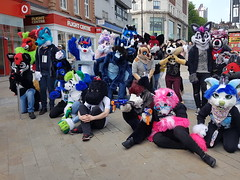 """Leeds furmeet May2018 • <a style=""""font-size:0.8em;"""" href=""""http://www.flickr.com/photos/97271265@N08/41528711794/"""" target=""""_blank"""">View on Flickr</a>"""