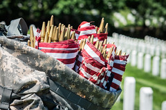 Flags In (Geoff Livingston) Tags: flag american usa memorial day veteran soldier grave gravestone cemetery flags arlington national