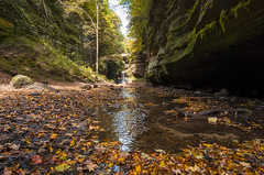 Early Fall at Matthiessen State Park (s.d.sea) Tags: enjoyillinois illinois chicago midwest fall summer autumn outdoors nature pentax k5iis leaves leaf landscape matthiessen state park waterfall creek canyon