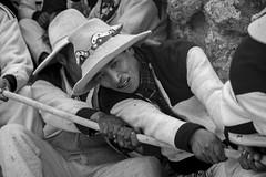 Working, Q'eswachaka Incan Bridge (glennlbphotography) Tags: americalatina cusco cuzco peru perú pérou qosqo southamerica altitude andean andes cordilleradelosandes cordillèredesandes fest frestival inca incanbridge incas journey montagne mountains nature people qeswachaka tradition traditionnal typique viagem viaje view voyage incan qeswachakaincanbridge peruanos peruvians péruviens men man