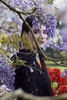 Gaby IMG_4105 RS (Swebbatron) Tags: fashion portrait model naturallight beautiful woman girl canon 50mm 1100d radlab gettotallyrad female modelshoot wisteria exeter devon