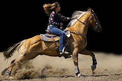 """Run at your dreams head on... (cowgirlrightup) Tags: barrelracer gold palomino cowgirl rodeo resizedforobviousreasons pretty cowgirlrightup attitude sport dirt"