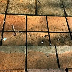 Next to a dump 🌎 (ma.ignaciasb) Tags: earth safe nachisb society irony photography