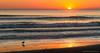 Blue waves on a golden morning. (Azul y Dorado). (Samuel Santiago) Tags: canon7d canonef70200f4l sunrise morning sun bird wave yellow beach seashore lightroom newsmyrnabeach florida lightroomcc
