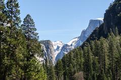 Yosemite NP - 3 (Carolina Hahn) Tags: kalifornien california nature landscape np yosemite