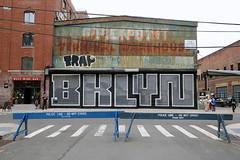 skewville (Luna Park) Tags: ny nyc newyork brooklyn streetart mural gate pulldown moniker artfair skewville bklyn trap trapif graffiti greenpoint terminal warehouse lunapark policeline barricade