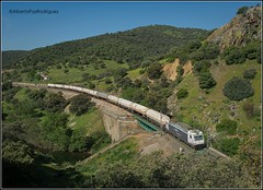 Santa Elena. (pazalberto269) Tags: spain despeñaperros natural renfe mercancias nikon photography power electric bombardier 253 sierra butano cisternas d5300 trainspotting tracks