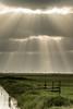 Sunrays (De Hollena) Tags: cloud holland lespaysbas lucht nederland niederlande noordholland nordholland sky sonnenstrahl sunray thenetherlands wolk wolke zonnestraal