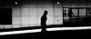 Harsh (Sean Batten) Tags: london england unitedkingdom gb eastlondon canarywharf blackandwhite bw streetphotography street light shadow city urban person nikon d800 35mm