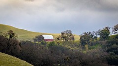 Barn on Ridge (CDay DaytimeStudios w/1,000,000 views) Tags: barn ca california eastbay eastbayregionalparks hill hillside light rock sunolpark sunolregionalpark sunolvalley trees winter