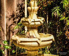 Brand New Fountain getting broken in (bcr160) Tags: bird bath 3 tier fountain backyard fence leaves water nikon d7100 nikkor 70200 bcr160 kl0