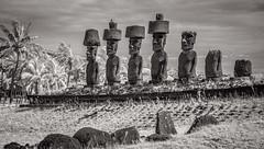 Anakena (Rodney Harvey) Tags: anakena easter island beach moai ahu ancient carving mysterious remote isloation pukoa infrared hawk