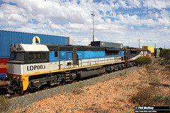 31 March 2018 SCT013 LDP003 5MP9 West Kalgoorlie (RailWA) Tags: railwa philmelling 2018 sct013 ldp003 5mp9 west kalgoorlie