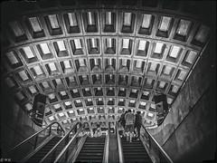 Washington Metro (michaelhertel) Tags: washington metro usa reise travel bw sw monochrome people street