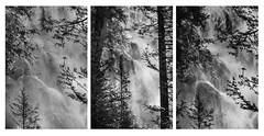 Shannon Falls Triptych || BC (David Marriott - Sydney) Tags: shannon falls waterfall british columbia bc triptych black white bw silhouette canada