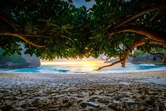 Colorful sunset (dannygreyton) Tags: beach sunset ocean sea indonesia bali nusapenida kelingkingbeach waves fujifilmxt2 fujifilm fujifilmxseries fujifilm1024mm nature sand trees