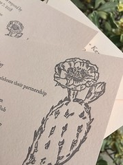 Cactus wedding invitations (artnoose) Tags: custom california berkeley deepinkletterpress source stock paper blush luxe flower succulents succulent botany botanical illustration grey gray pink nopales cactus card reply invitation invitations wedding letterpress