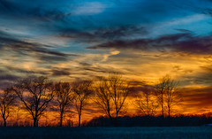 Silhouette Sunset (tquist24) Tags: goshen hdr indiana nikon nikond5300 outdoor blue clouds color evening farm field geotagged orange rural silhouette sky sunset tree trees unitedstates